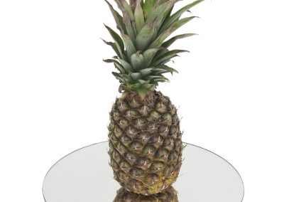 "Centerpiece mirror 14"" acrylic with pineapple displayed"